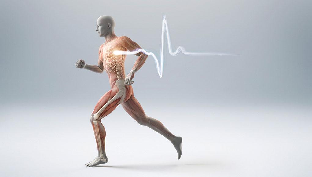 Abbassare Frequenza Cardiaca