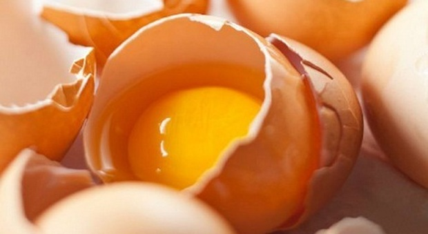 Uova, Arma In Più Contro Ictus: Ok Fino A Una Al Giorno
