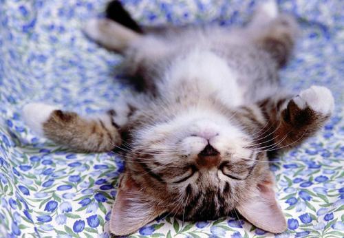 Perché Allenarsi Fa Dormire Meglio?